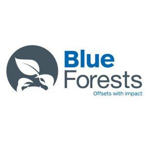Blue-forest-logo