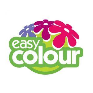 Easy-Colour-logo
