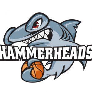 Hammerheads-logo