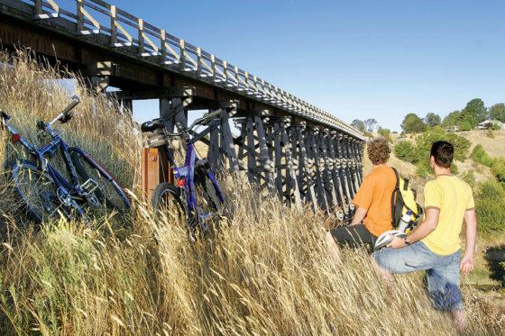 Bikes-&-bridge1