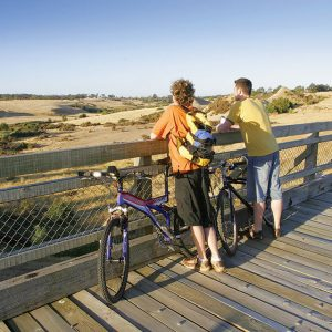 Bikes-on-bridge1