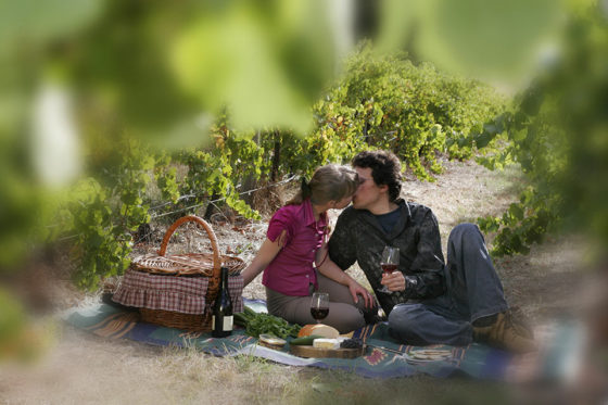 Couple-in-vineyard-kissing-blurred