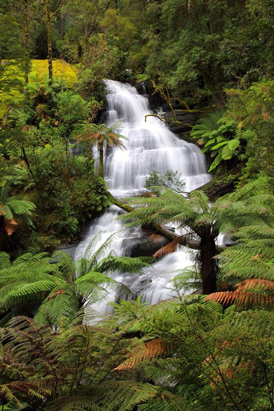 Otway-Waterfall-2