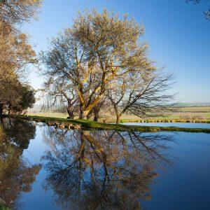 Tuki-Landscape-12