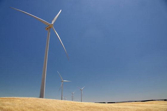 Wind-turbines-in-wheat-field