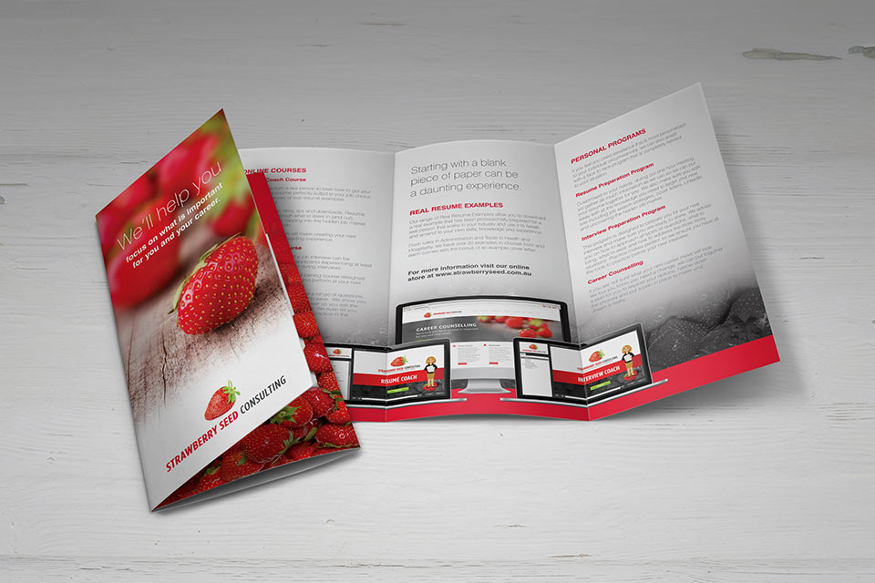 Strawberry-Seed-DL-brochure-2