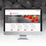 Strawberry-seed-website-computer