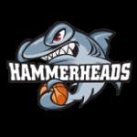 hammerheads-sponsor-logo