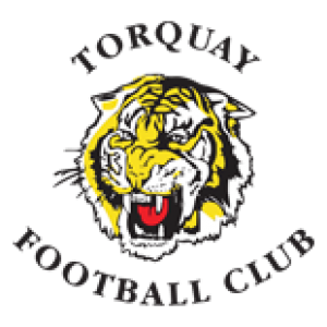 torquay-football-club-logo-sponsor