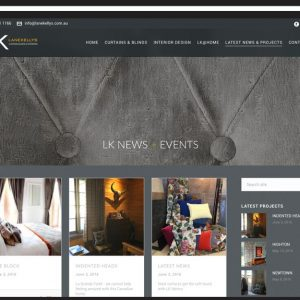 Lane Kellys Website Design
