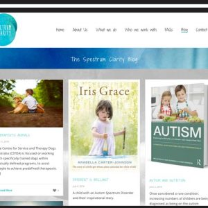 Spectrum-Clarity-website-blog