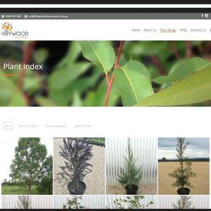 Hillywood Website Build